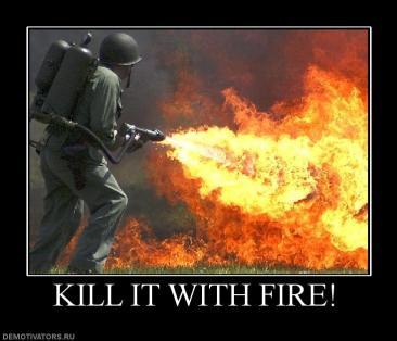 Kill_it_with_fire_image_macro.jpg